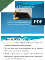 New DNA Computer