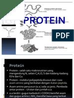 5. Analisis Protein