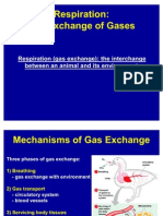 5. Respiration- The Exchange of Gases