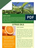 June 2010 Market Report