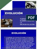 Fuerzas Element Ales de La Microevolucion