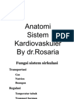 Anatomi Cor