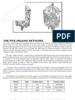 The 5 Organs Network of Chinese Medicine - Introduction