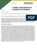 Microorgnismos en La Niebla