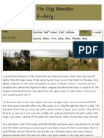 The Dog Rambler e-diary 11 January 2012