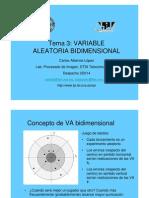 Variable aleatoria Bidimensional