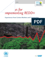 Pathways for Implementing REDD+