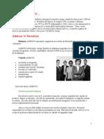 Adecco Proiect Marketing Final