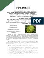 Fractalii proiect