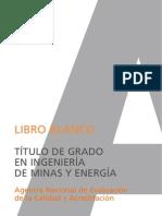 Libroblanco Minas Def
