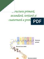Proteine-difractia Cu Raze X