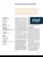 Yacimientos Carbonaticos1.PDF (2)