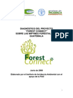 "Diagnostico Proyecto ""FOREST CONNECT"" sobre MIPYMES FORESTALES en Guatemala"