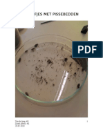 BiologieB-Toets verslag