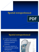 Sp.retroperitoneal Curs 9 Anatomie 31.11