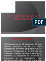 PRESENTACION PROTECCIONISMO