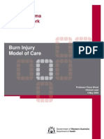Burn Injury Model of Care
