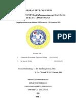 Laporan DDL Fix Print