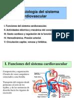 CTA T5 Cardiovascular