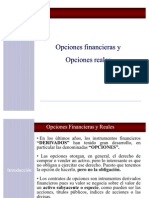Chpt0013 Opciones Financier As y Reales