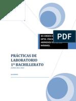 PRÁCTICAS DE LABORATORIO 1º BACH[1]