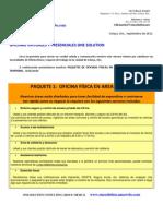 ONE SOLUTION_Oficinas Virtuales 2011