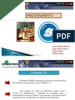 Seminário_CBERS_Luiz Rocha_Eng. Civil- UNIPAMPA