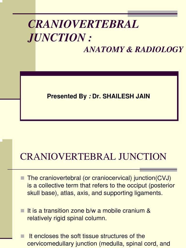CRANIOVETEBRALJUNCTION | Vertebra | Vertebral Column