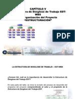 CAP V-WBS-OBS AGOSTO 2008-P(2)
