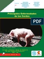 Enermedades de Los Cerdos