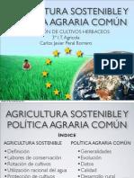 Agricultura sostenible y Política agraria común PAC (Presentación)