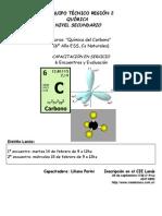 Afiche Curso Quimica Del Carbono en Servicio_Febrero 2012_Lanus