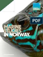 Marine Studies 2010 Web
