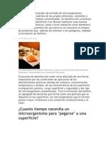 Como y Cuando Desinfectar Alimentos