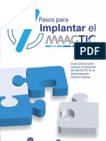 7 Pasos para Implantar el Maagtic