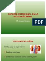 Nutricion Px Renal