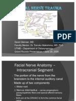 Fac Nerve Slides 090629