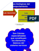 Bases Biologic As Del Comport a Mien To
