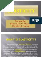Elasticity Report