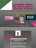 Hipersensibilidad  a los  himenópteros, Abejas  Nicaragua,  II. Seminario  Clínica de  Asma  y Alergia