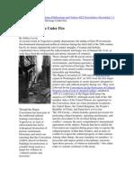 Levin, J. Cultural Heritage Under Fire. 1992