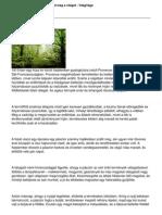365.pdf Katonah Dremel Tool Wiring Diagram on
