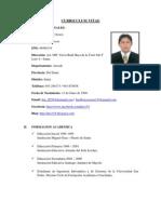 Curriculum Luis Flores Osorio