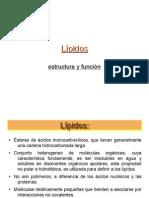 LIPIDOS quimica