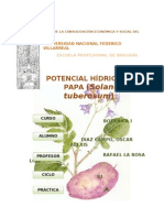 Potencial Hidrico de Solanum Tuberosum