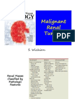 Malignant Renal Tumor