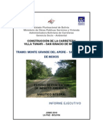 Tramo III Informe Ejecutivo 300610