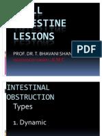 31 8 10 Small Intestine