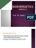 Bioenergetics Module 3. Sabah