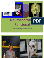 Cerebro y Conducta do